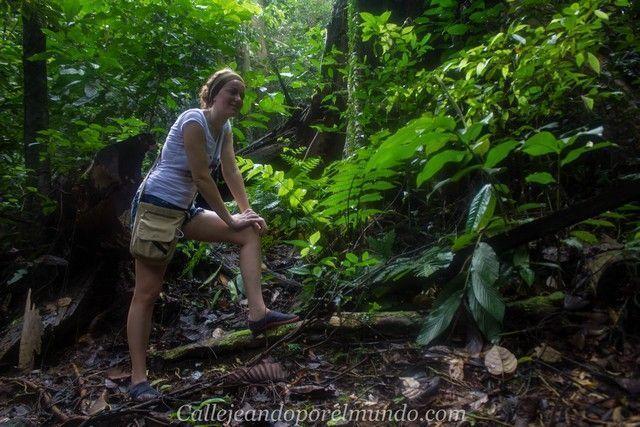 parque nacional kubah y matang