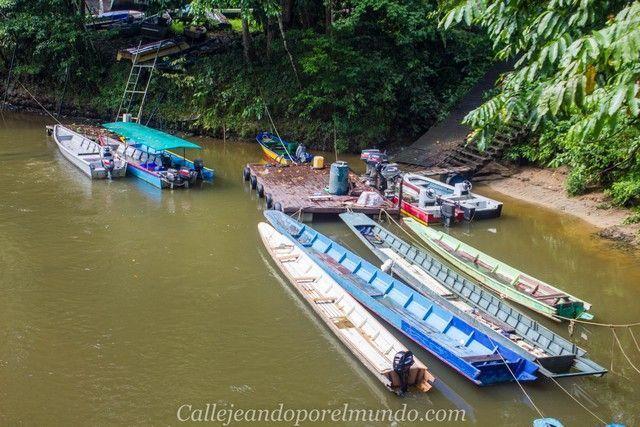 barcas en el rio melinau borneo malasia