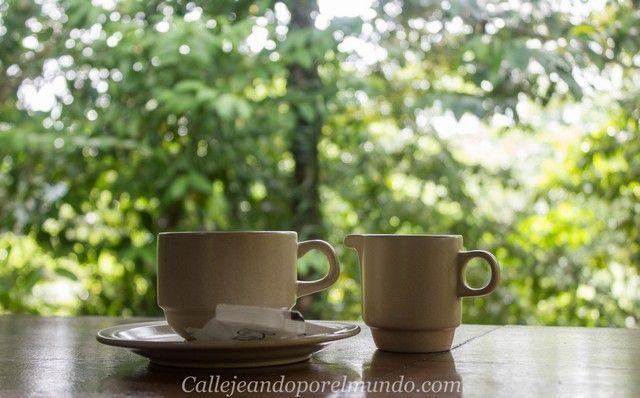 cafe gunung mulu borneo malasia