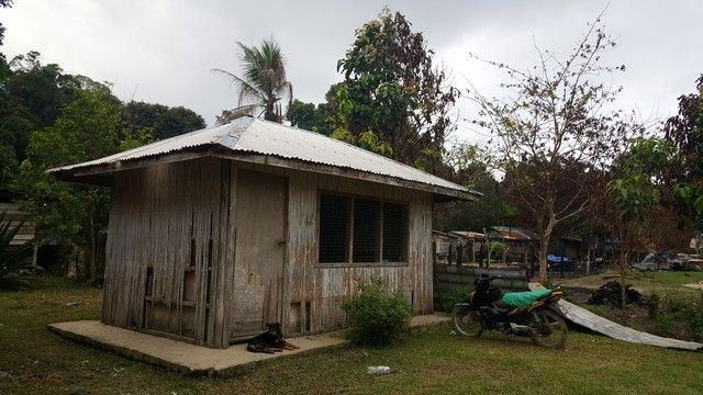 tribu penan borneo malasia