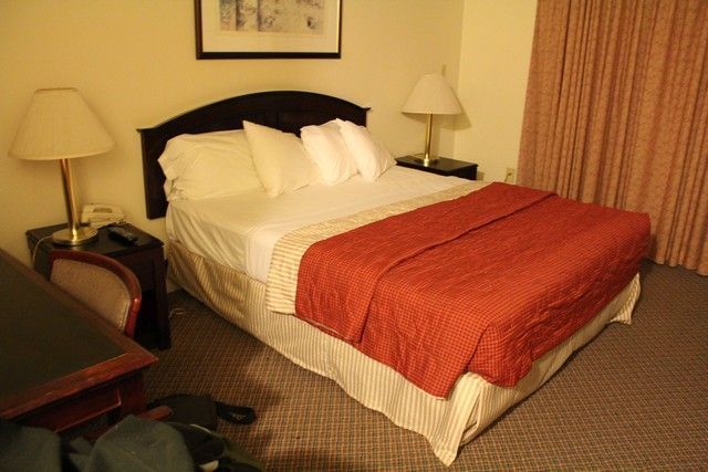 hoteles costa oeste de eeuu hollywood donwntowner inn