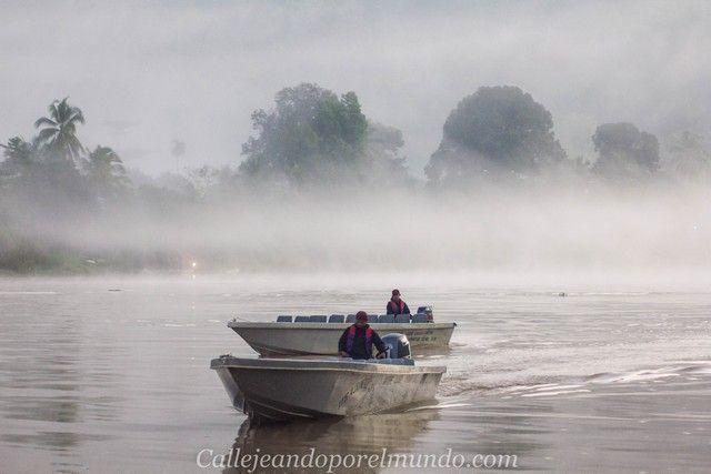 amanecer en el río kinabatangan borneo malasia (2)