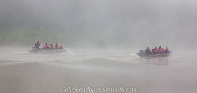 amanecer en el río kinabatangan borneo malasia (3)