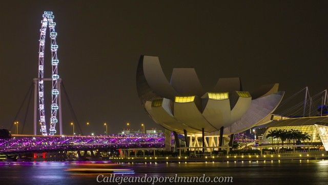 singapur-en-24-horas-marina-bay-nocturna