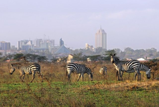 luna-de-miel-en-africa-kenia-y-tanzania-8
