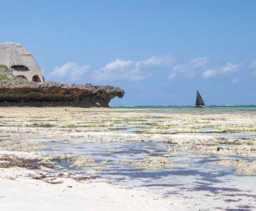 chale island the sand kenia