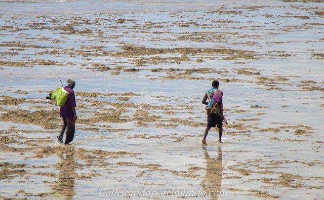 marineros the sands at chale island diani beach kenia