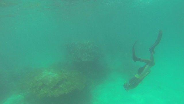 fondos marinos kisite national park kenia (6)