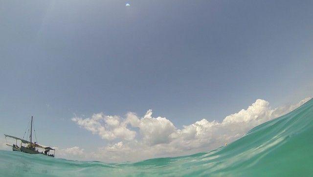fondos marinos kisite national park kenia (9)