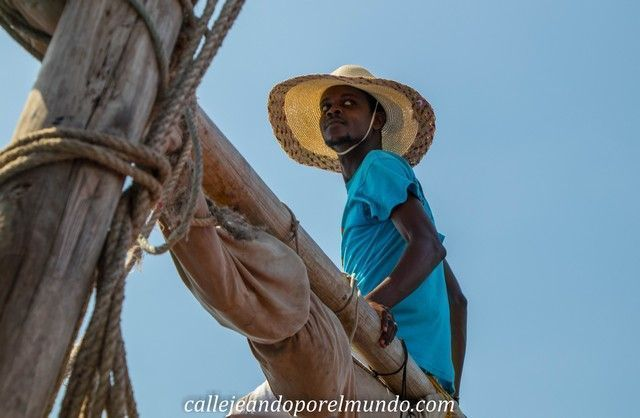 kisite national park mombasa kenia