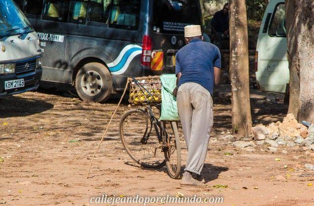 shimoni kisite national park kenia (2)