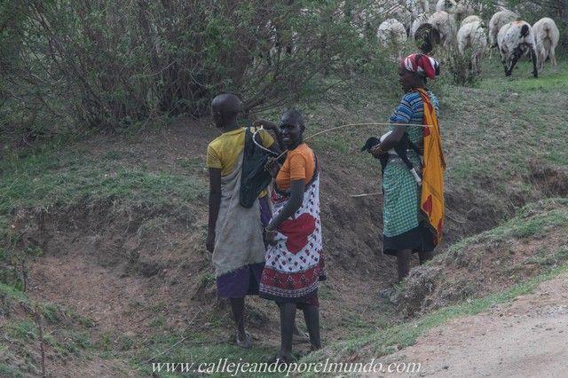 masai mara kenia (8)