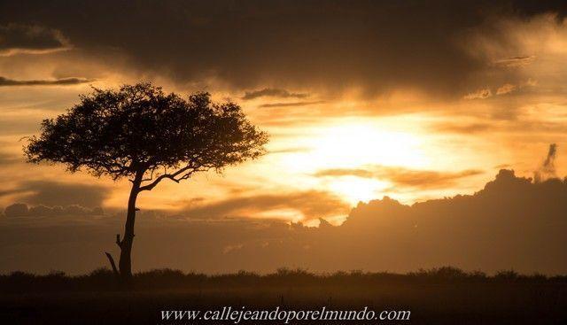 puesta de sol masai mara kenia (2)