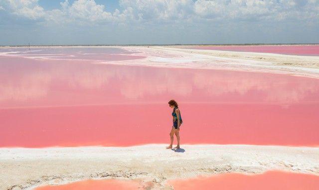 las coloradas rio lagartos yucatan (3)