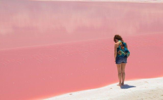 las coloradas rio lagartos yucatan (5)