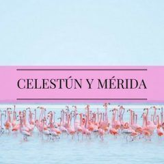 Celestún, en busca del flamenco rosa