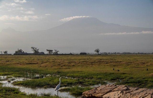kilimanjaro desde amboseli kenia (1)