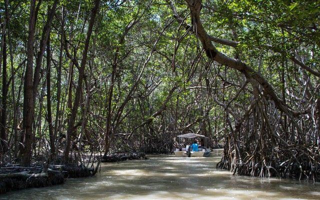 reserva biosfera ria celestún yucatan mexico (11)