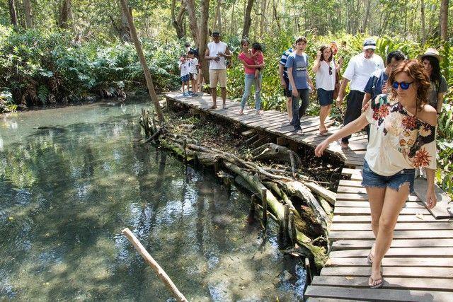 reserva biosfera ria celestún yucatan mexico (13)