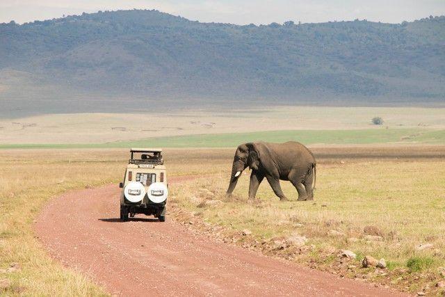 area de conservacion del ngorongoro tanzania (28)