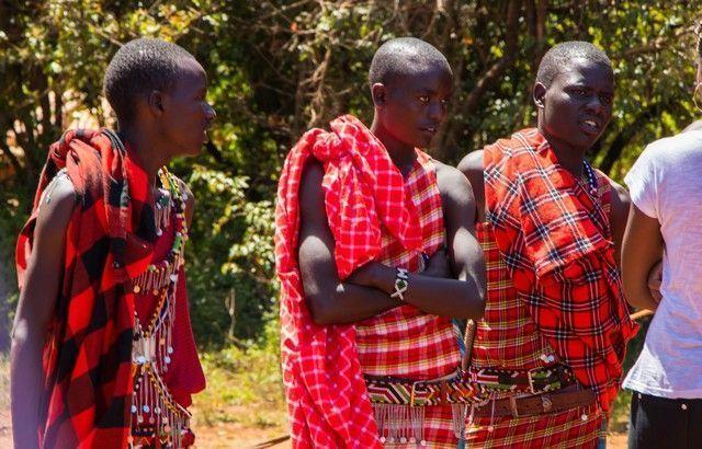 david sheldrick un dia en nairobi (2)