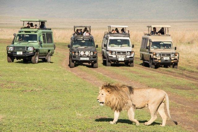 ngorongoro area de conservacion tanzania (10)