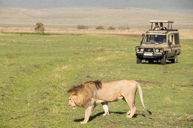 ngorongoro area de conservacion tanzania (11)