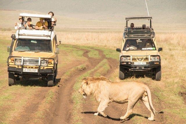 ngorongoro area de conservacion tanzania (32)