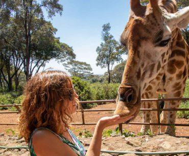 un día en nairobi jiraffe centre portada