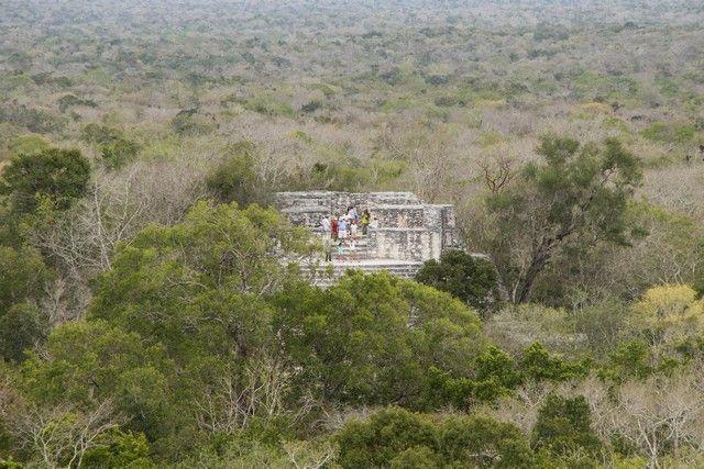 calakmul campeche peninsula de yucatan mexico (21)