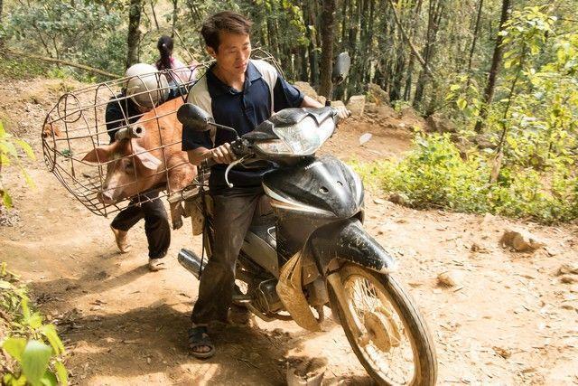 trekking por sapa en un día vietnam (23)