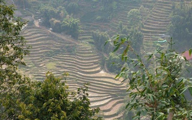 trekking por sapa en un día vietnam (26)
