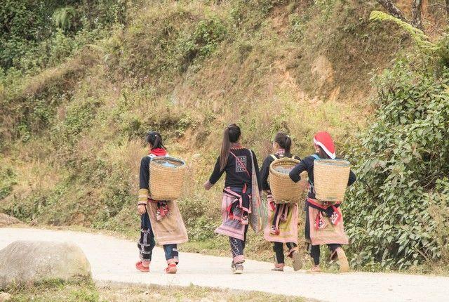 trekking por sapa en un día vietnam (35)