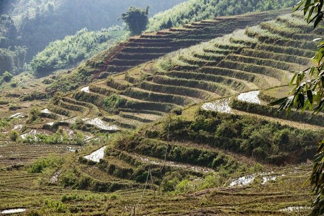 trekking por sapa en un día vietnam (7)