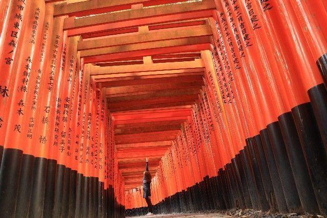 presupuesto de viaje a japon en 21 días (5)