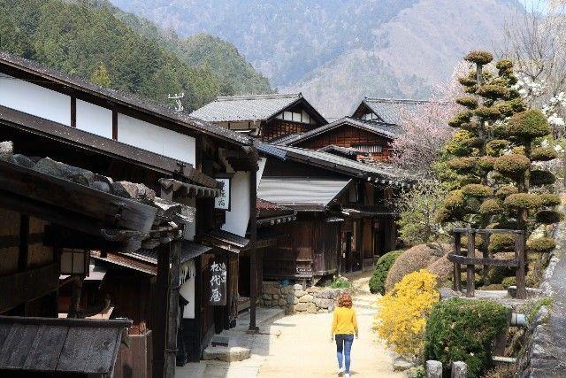 presupuesto de viaje a japon en 21 días (7)