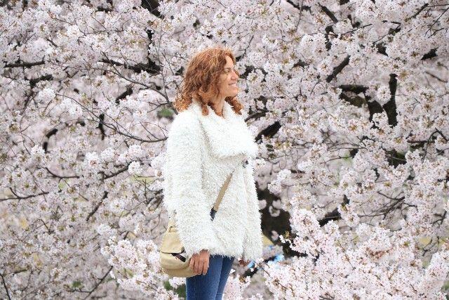 presupuesto de viaje a japon en 21 días (8)