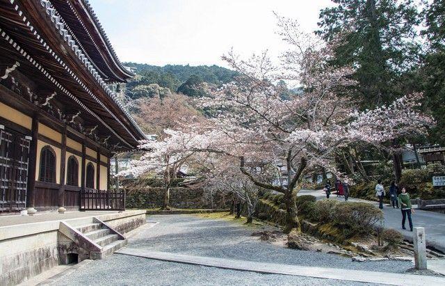 Templo Nanzen-ji de Kioto japon (4)