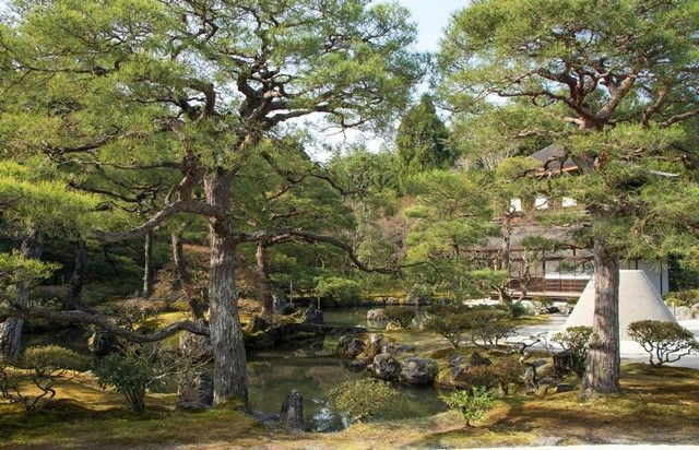 ginkakuji kioto japon (3)