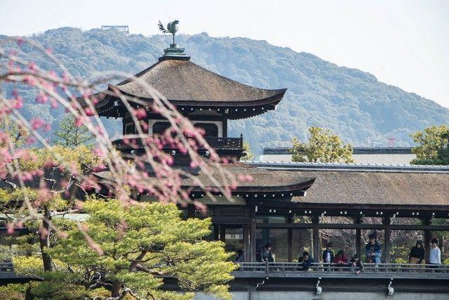 jardines santuario heian kioto japon (7)