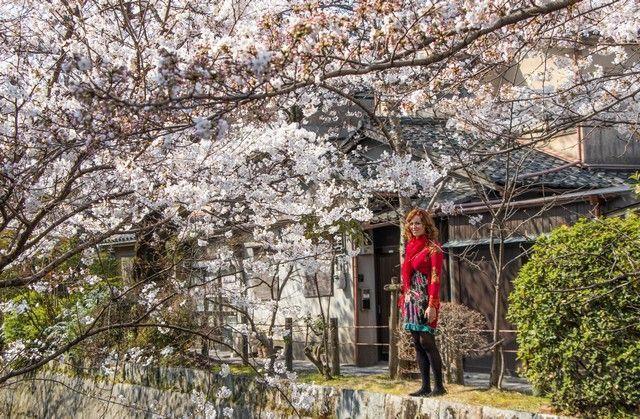 paseo de la filosofia kioto japon (12)