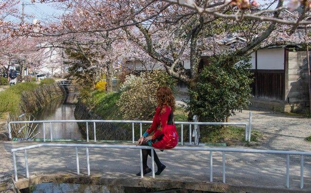 paseo de la filosofia kioto japon (3)