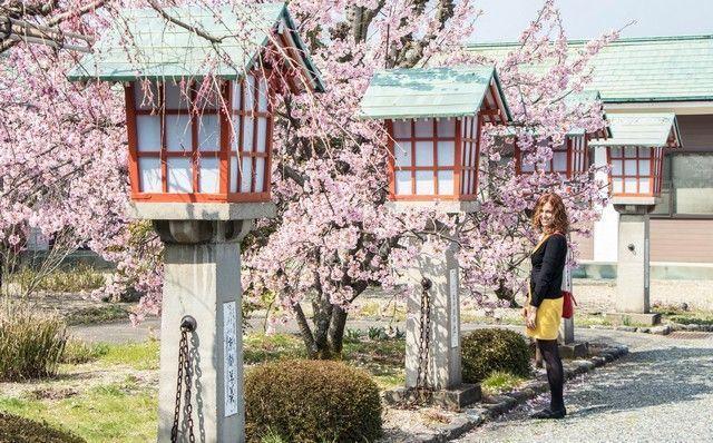 paseo por kioto de kiyomizudera a gion (37)