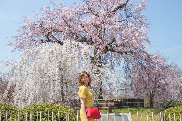 paseo por kioto de kiyomizudera a gion (48)