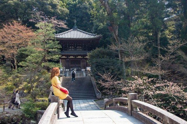 paseo por kioto de kiyomizudera a gion (50)