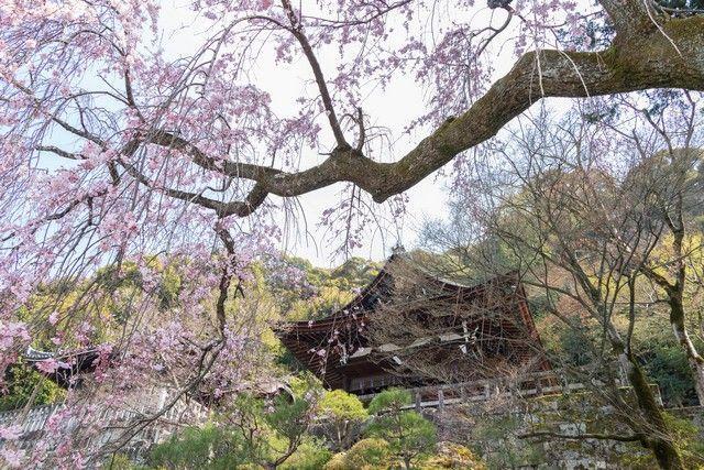 paseo por kioto de kiyomizudera a gion (52)