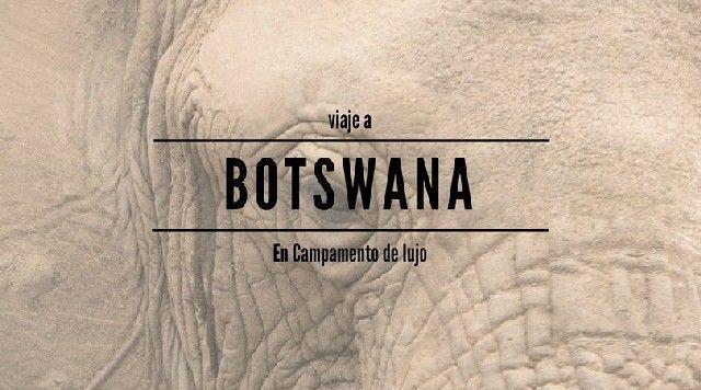 viaje a botswana en safari de lujo mopane game safaris