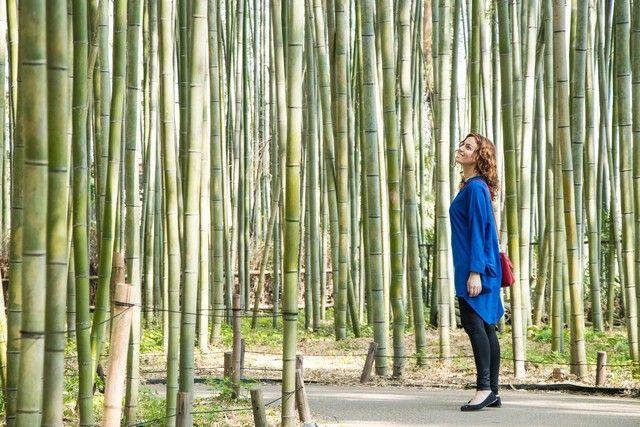 arashiyama y el norte de kioto japon (11)