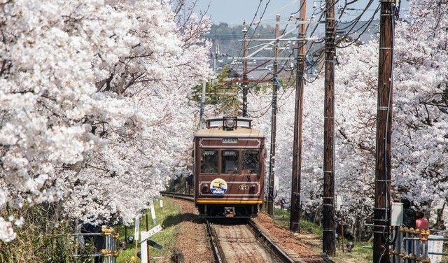 arashiyama y el norte de kioto japon (29)