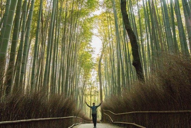 arashiyama y el norte de kioto japon (3)